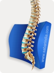 Lumbocare Aligns Spine anatomically
